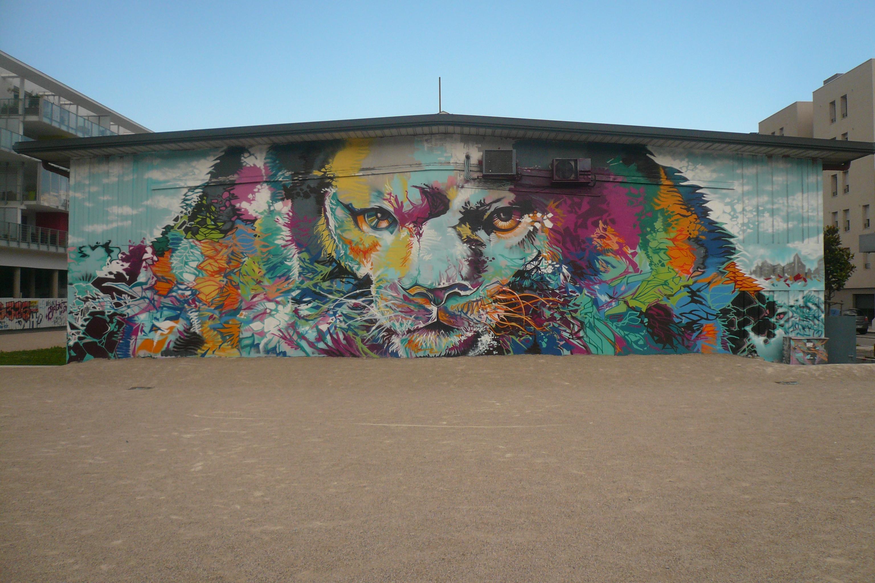 lion loin