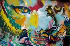 lionzoom