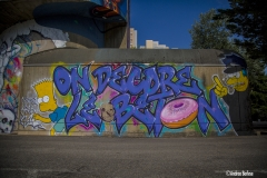 #WILL #K1 #KILLAH-ONE #SREK #GREG #DISCRE #STREETART #AUTHENTIKKOOLURE #SRAYPAINT #GRENOBLE #GRAFFITI